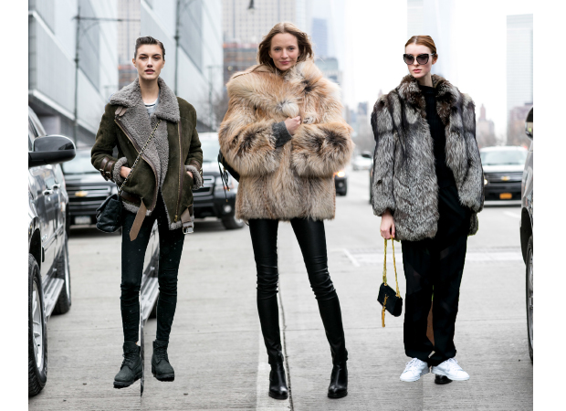Models-in-fur