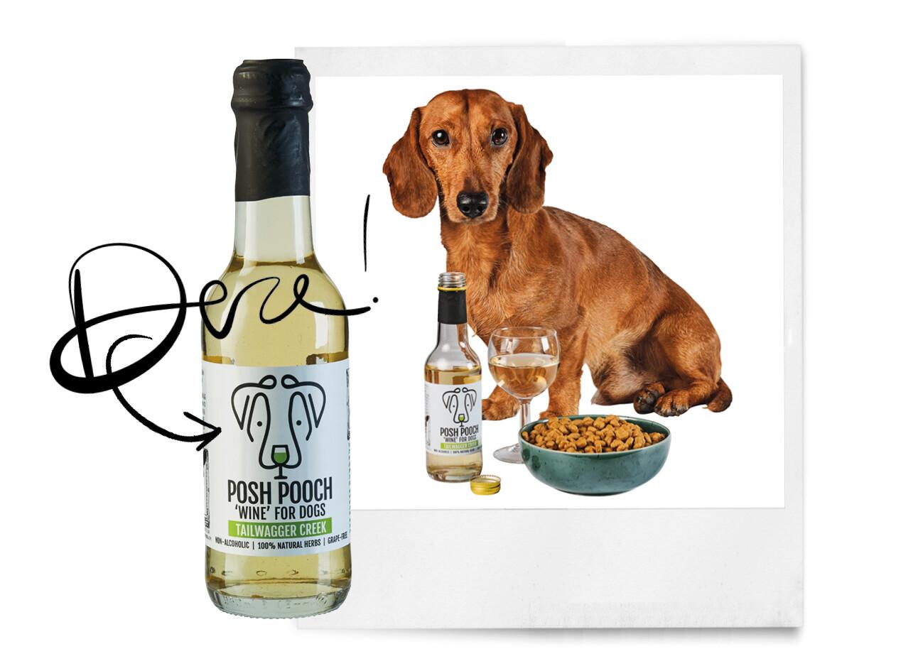 honden wijn aldi
