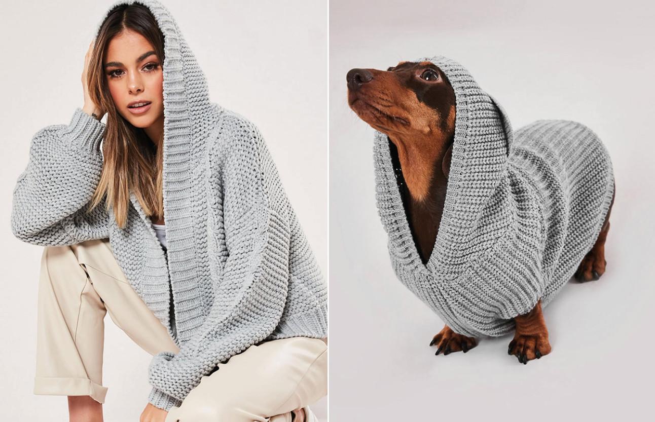 beelden van honden en mensen die matchende truien dragen
