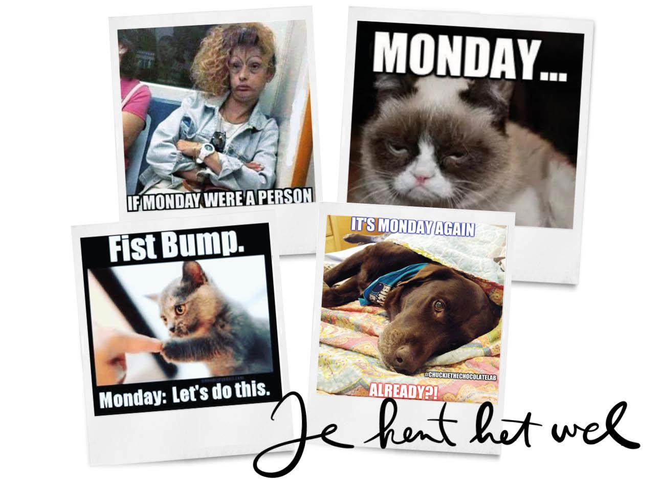 Memes Maandag