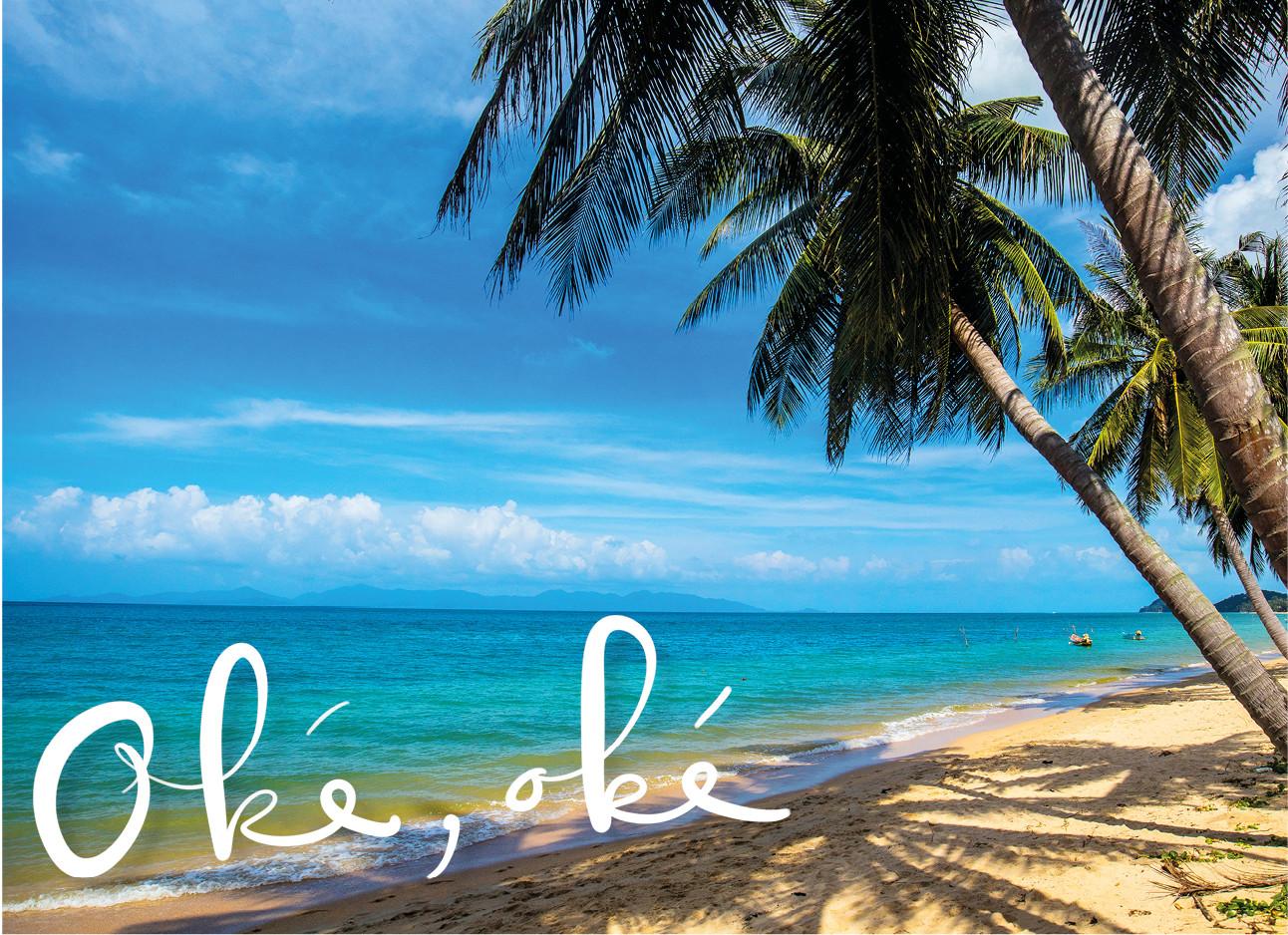 beeld van een strand met palmbomen