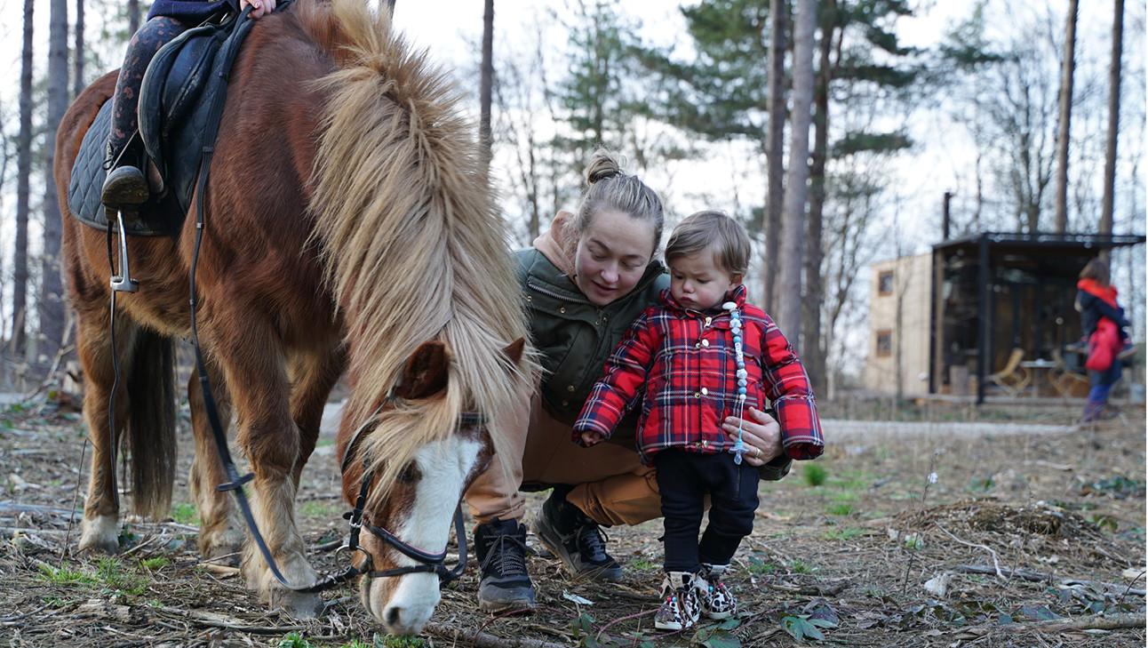 carolien+otis+horse