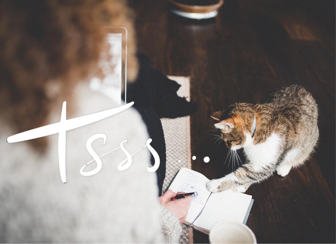 vrouw aan het werk met kat