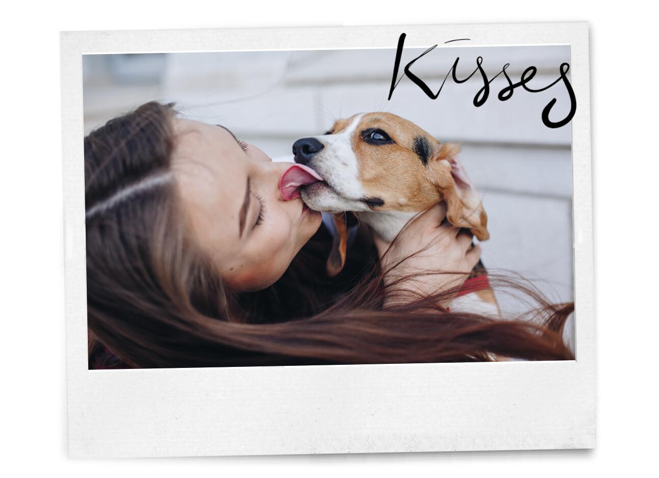 kus van je hond krijgen