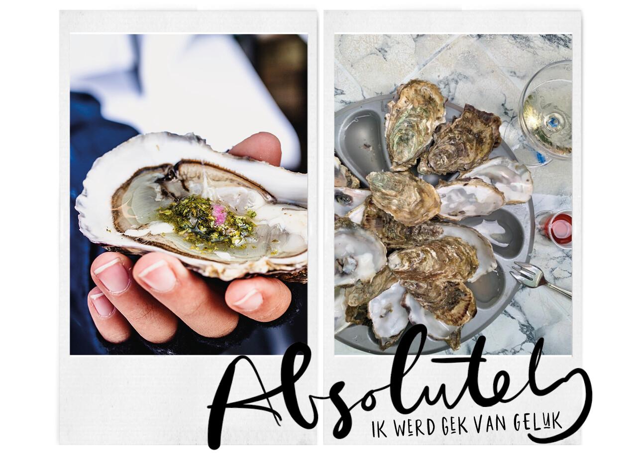 dit is de perfecte vakantiebestemming voor oester liefhebbers