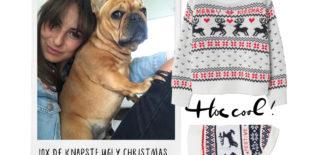 Hoe fouter hoe beter 10x de knapste ugly Christmas sweaters (voor jou en je hond)