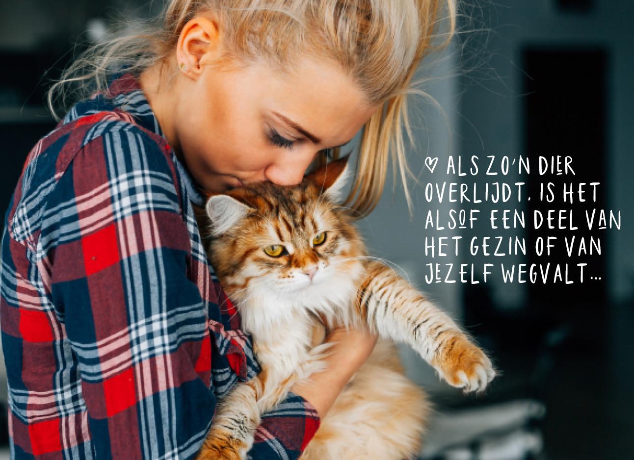 vrouw en kat knuffelen