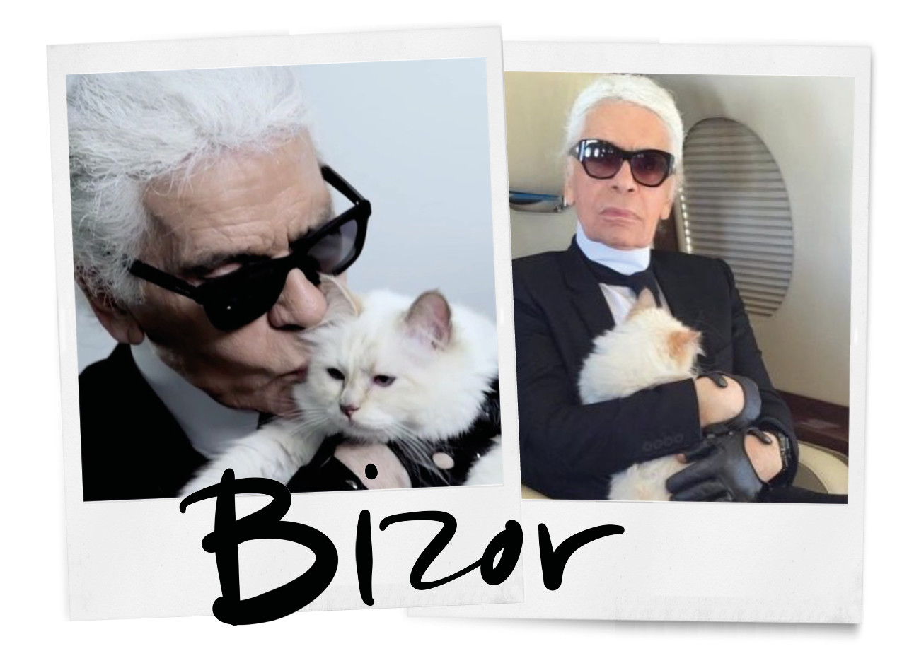 karl lagerfeld and cat choupette