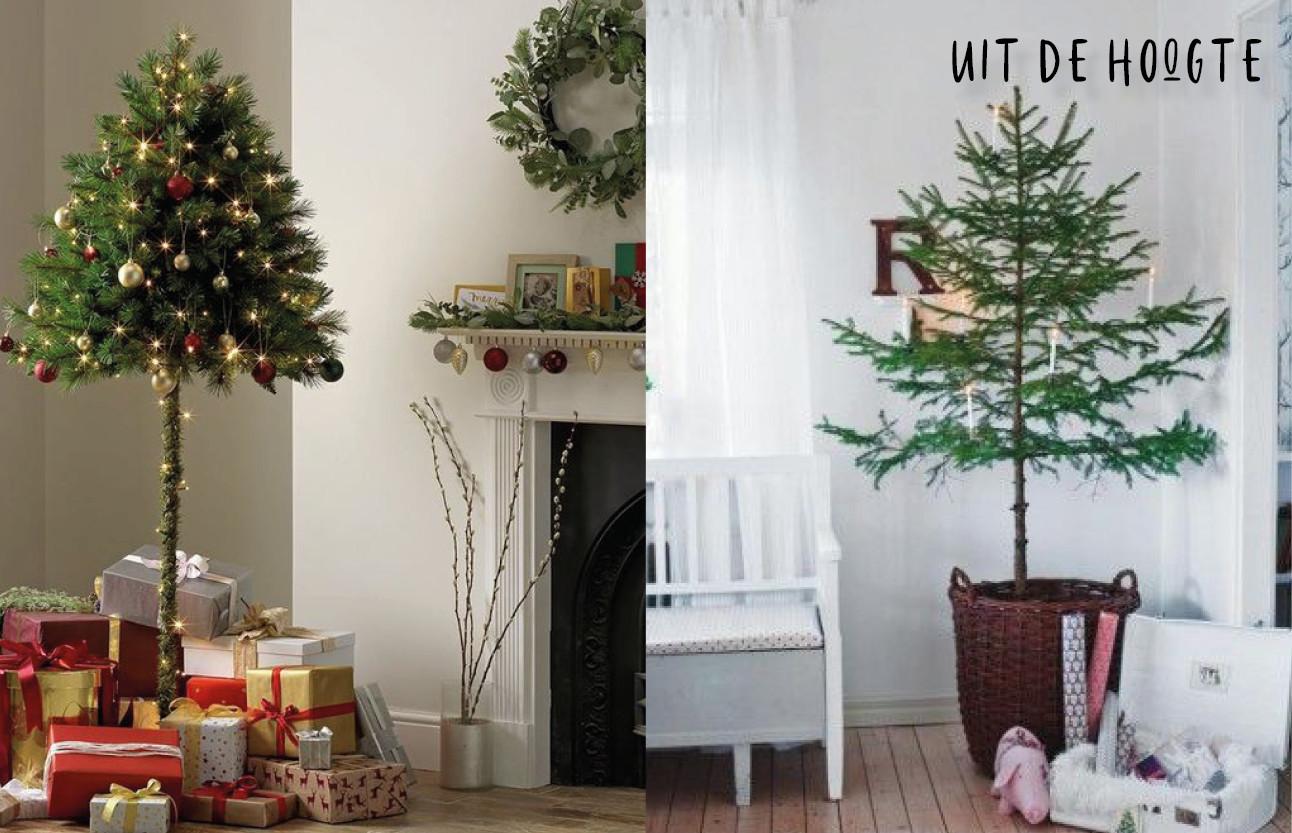 kerstbomen die hoog boven de grond beginnen