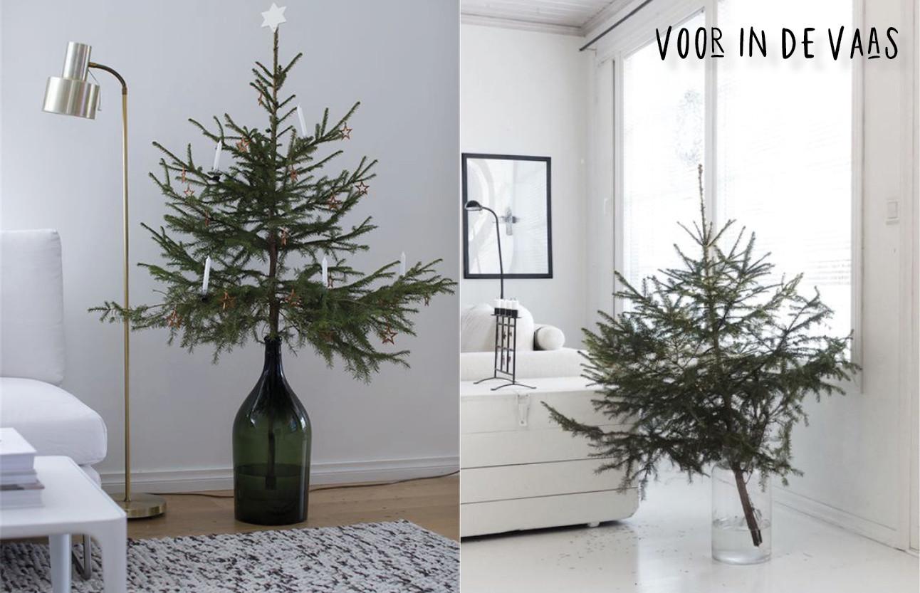 kerstbomen die in een glazen vaas zitten