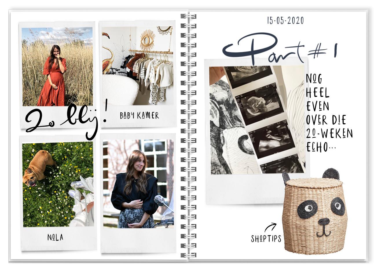 Lils Preggo Praat agenda met foto's en teksten lilian nola echo beeld shopping mand