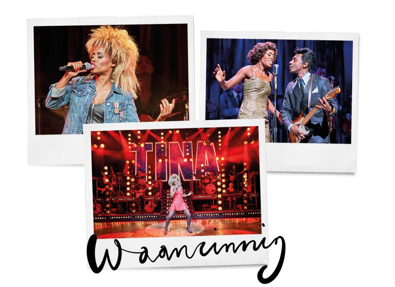 Tina Turner de musical