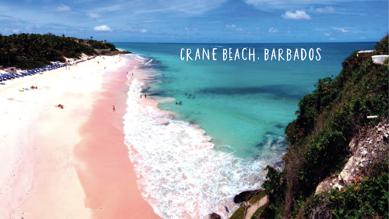 crane beach, pink sand, blue sea,blue sky