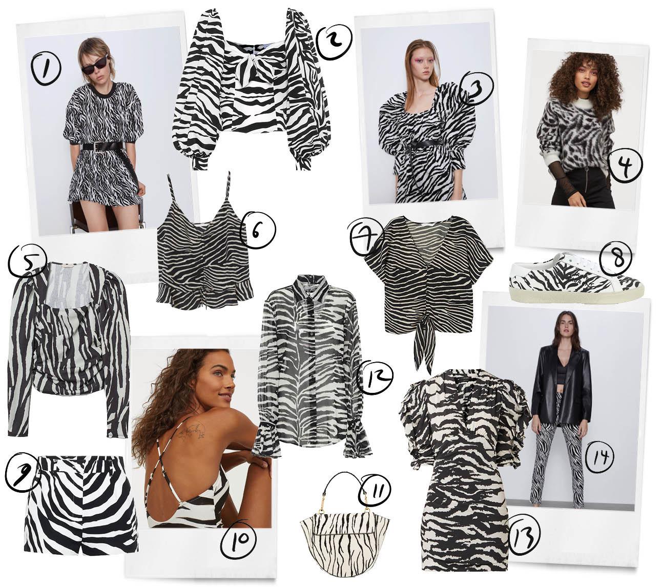 Zebra print trend