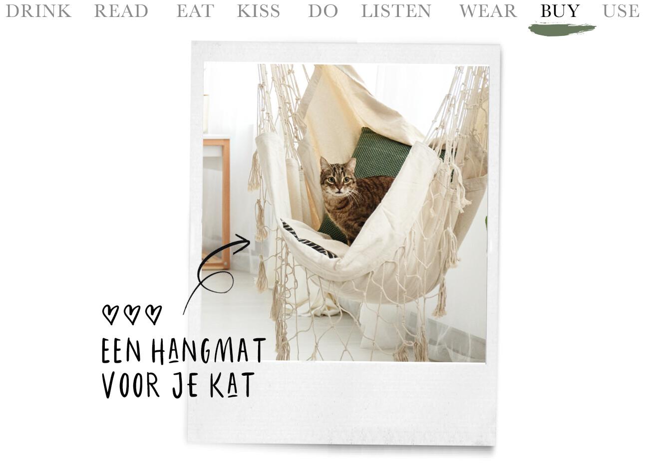 kat in een hangmat