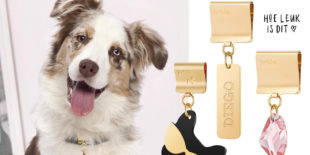 Today we shop BRKLZ Jewelry for Dogs