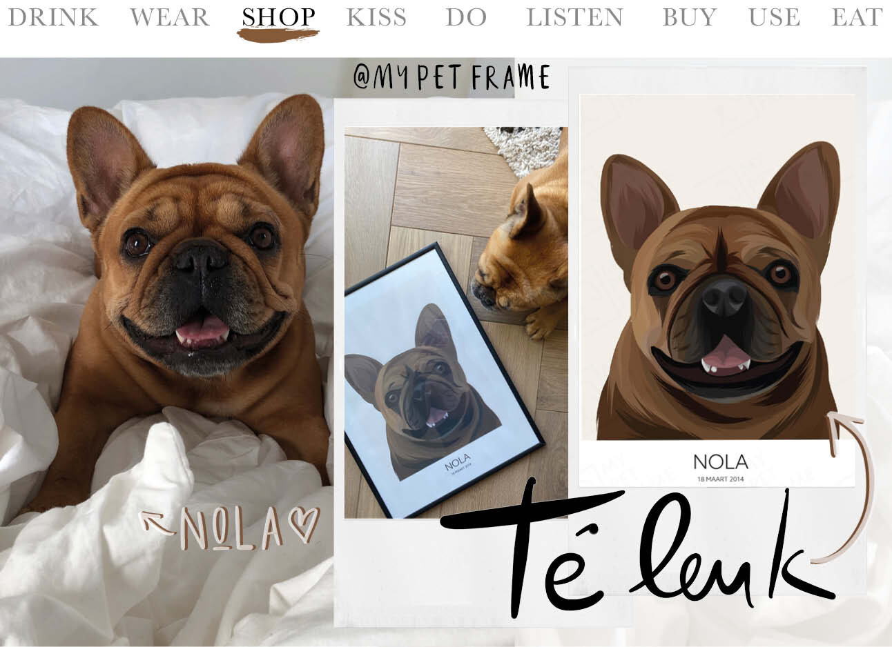 Today we shop at My Pet Frame