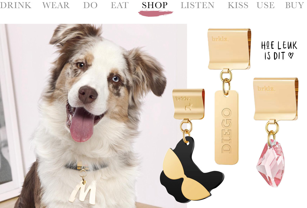 Today we shop jewelry for dogs