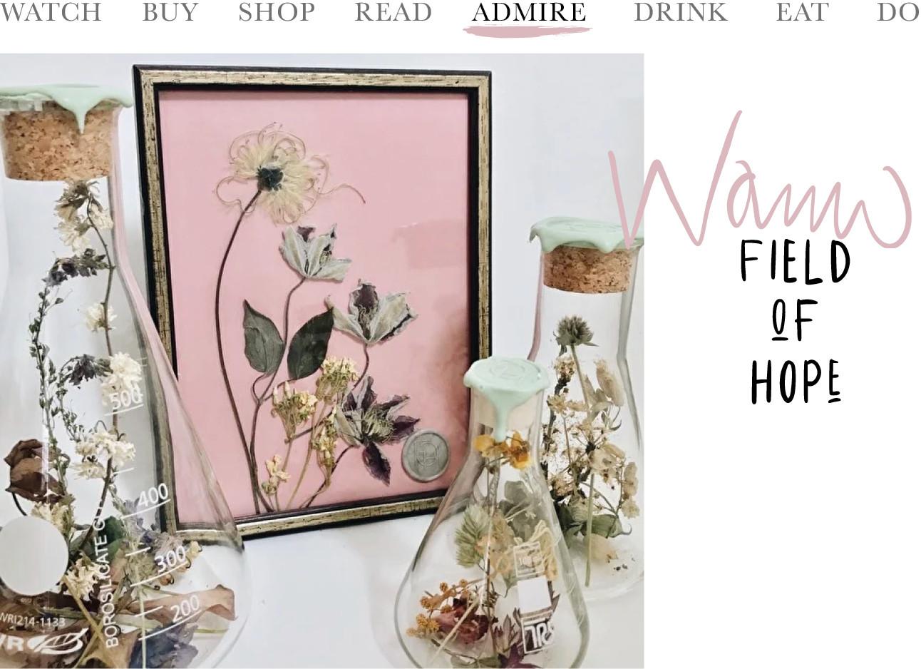 beeld van gedroogde bloemen in een lijstje en een vaasje
