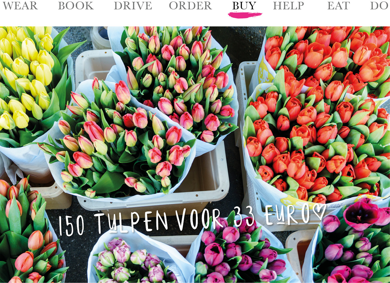 Today we buy 150 tulpen voor 33 euro