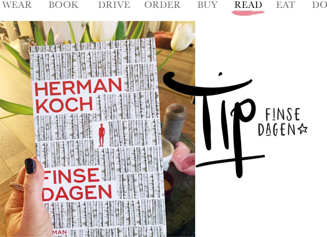Today we fInse Dagen Herman Koch boek