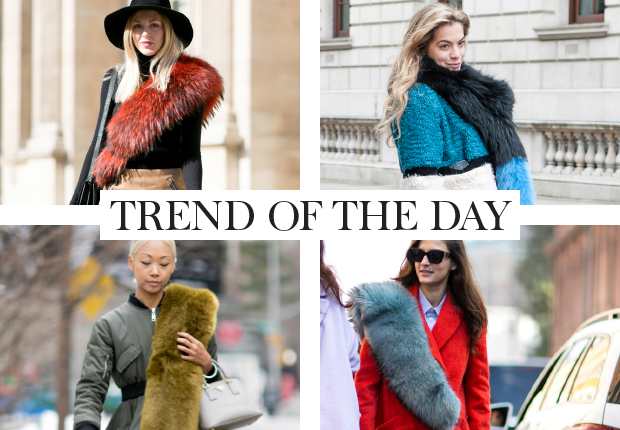 trend-of-the-day,-bontje-1
