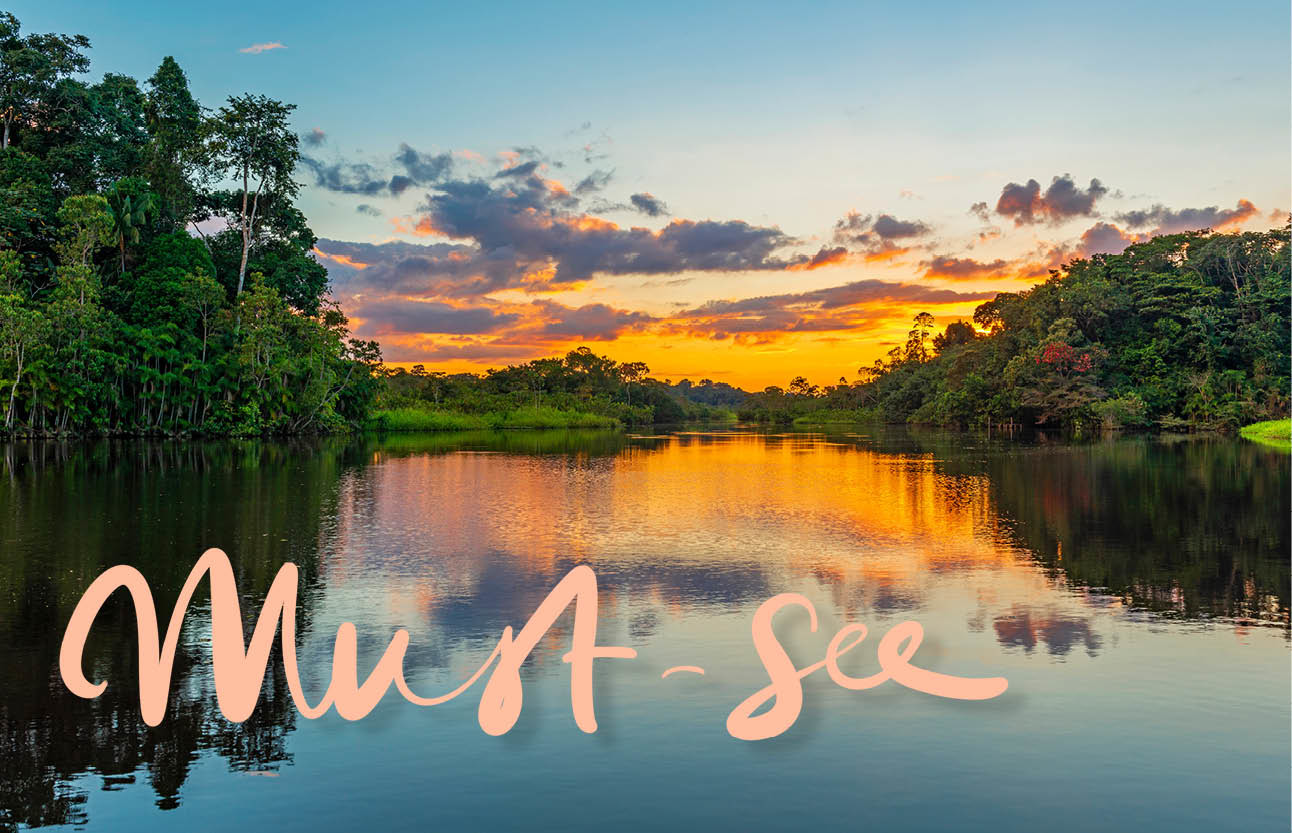 colombia, sunset, water, nature, forest