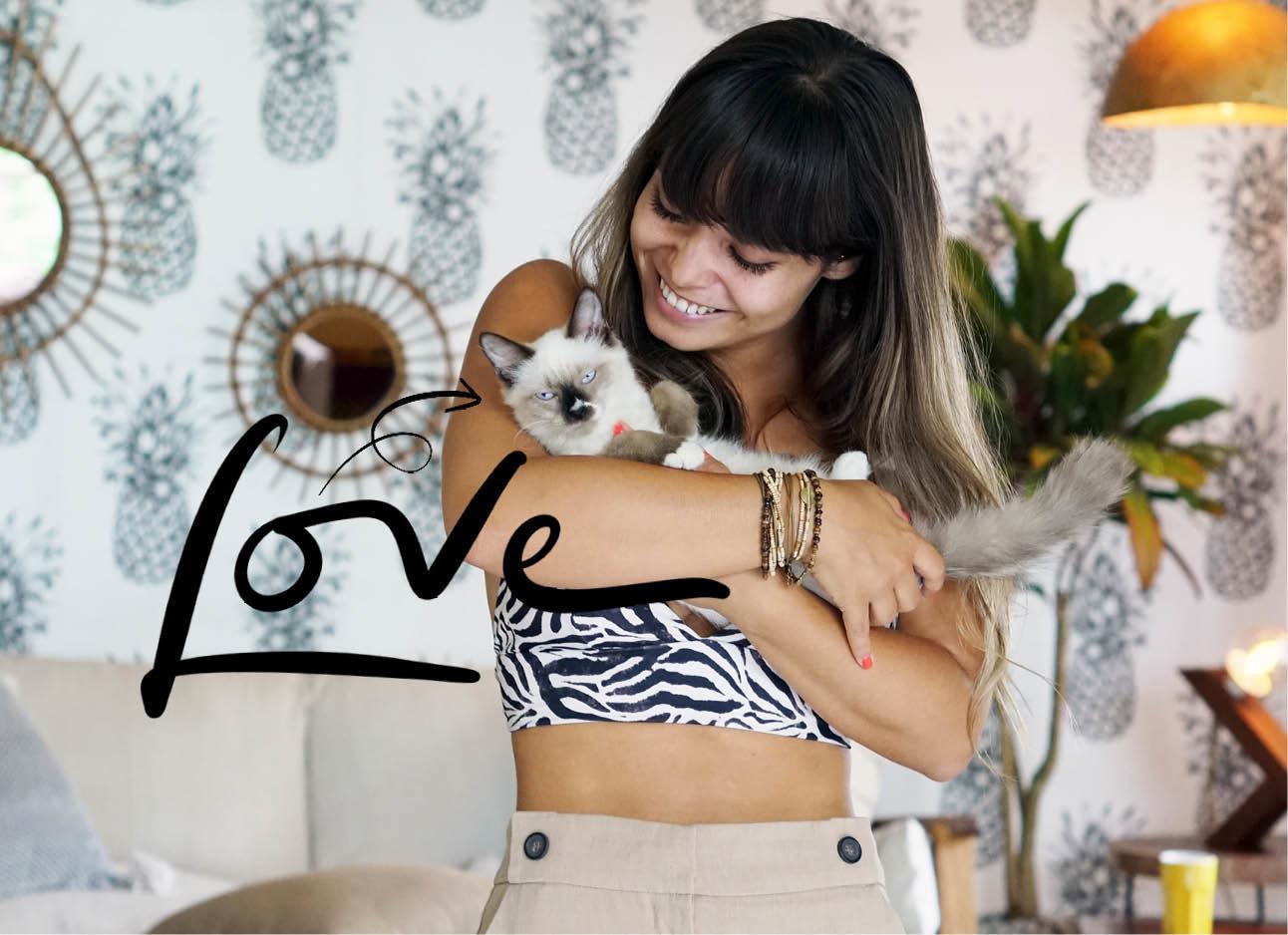 katten knuffelen liefde
